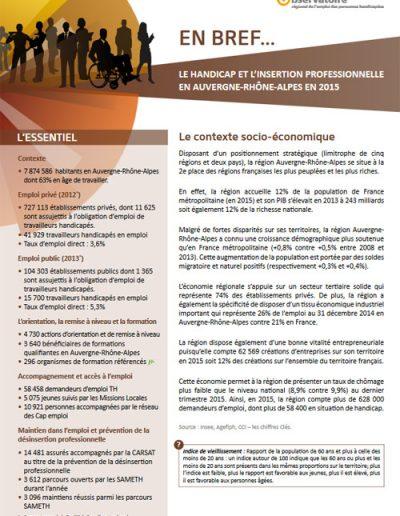 En Bref : synthèse départementale sur le handicap et l'insertion professionnelle (Commanditaire : Direccte Auvergne-Rhône-Alpes)
